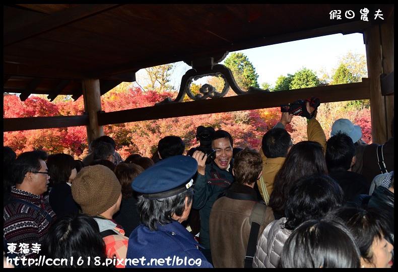 東福寺DSC_5116