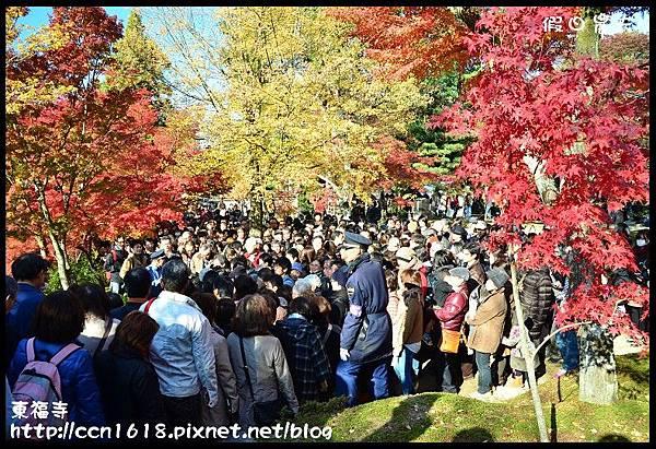 東福寺DSC_5213
