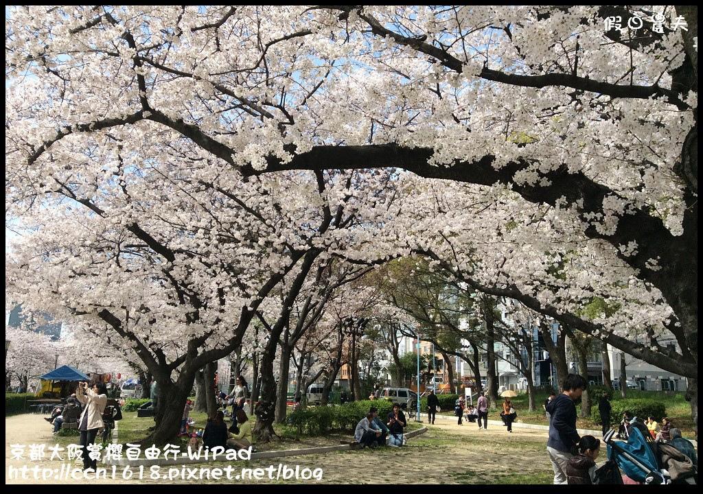 京都大阪賞櫻自由行-WiPad京都大阪櫻花 072