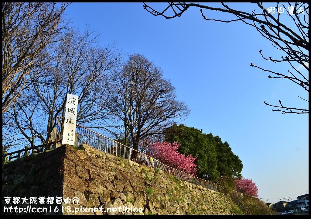 京都大阪賞櫻自由行DSC_8875