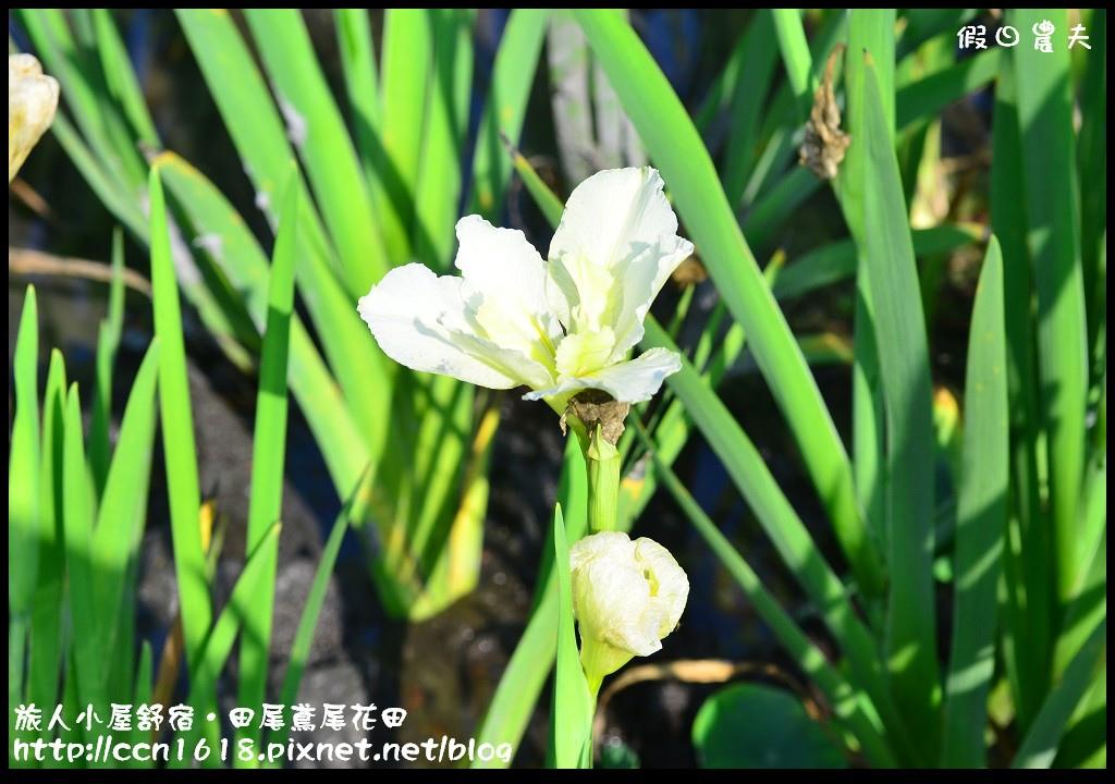 旅人小屋舒宿DSC_6483