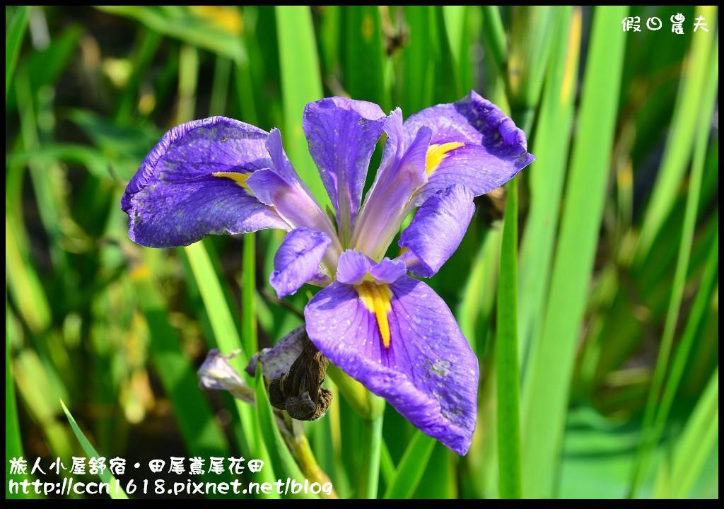 旅人小屋舒宿DSC_6487