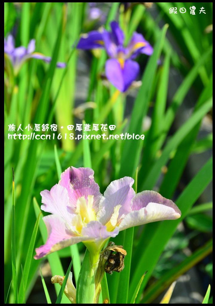 旅人小屋舒宿DSC_6517