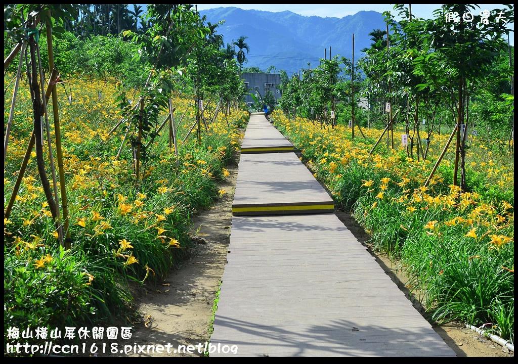 梅山橫山屏休閒園區DSC_7997