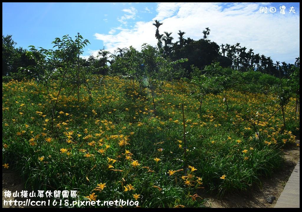 梅山橫山屏休閒園區DSC_8000