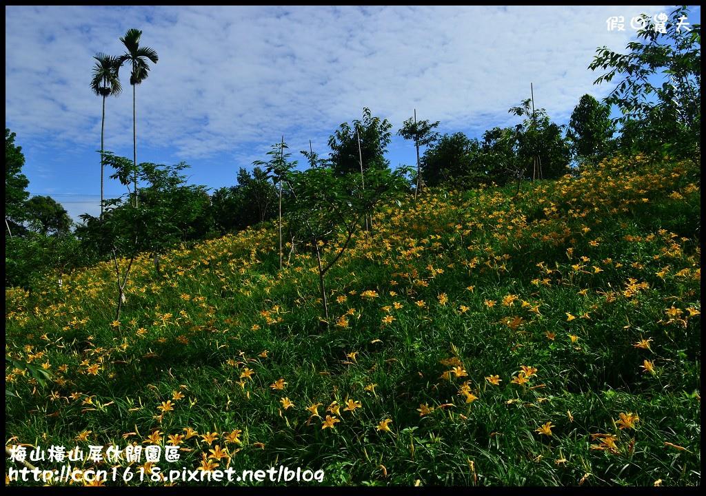 梅山橫山屏休閒園區DSC_8001