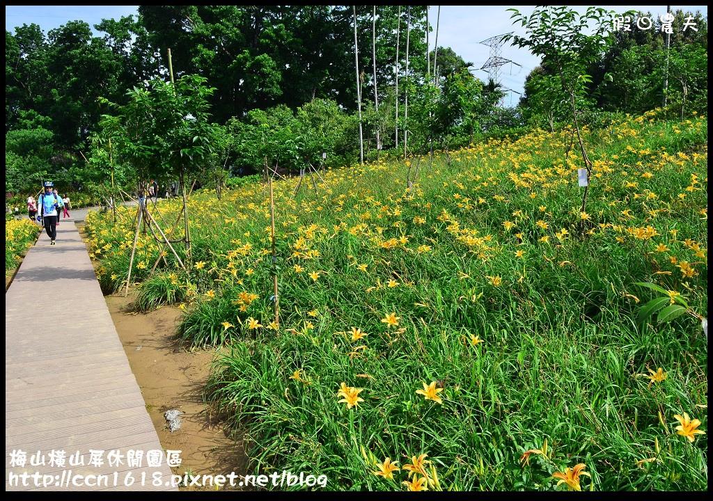 梅山橫山屏休閒園區DSC_8030