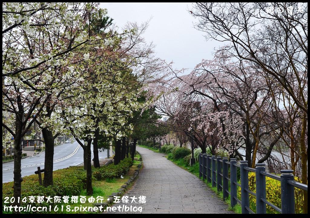 2014京都大阪賞櫻自由行.五條大橋DSC_0716