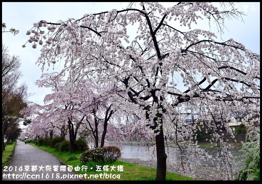 2014京都大阪賞櫻自由行.五條大橋DSC_0729