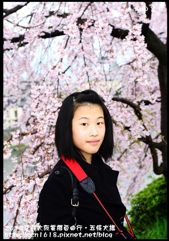 2014京都大阪賞櫻自由行.五條大橋DSC_0742