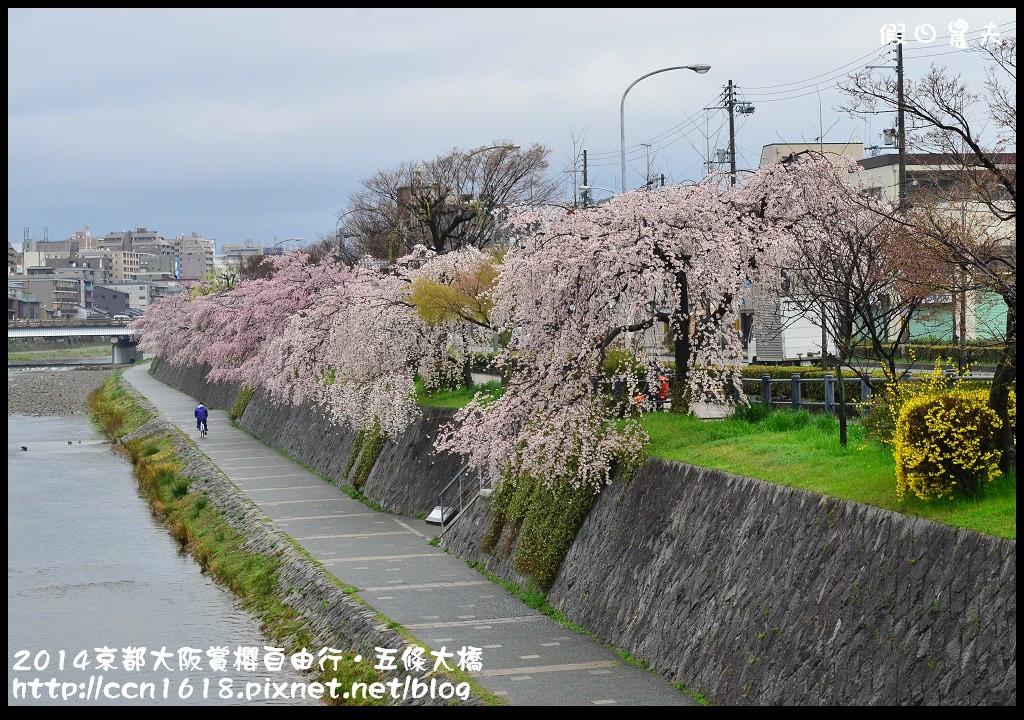2014京都大阪賞櫻自由行.五條大橋DSC_0746