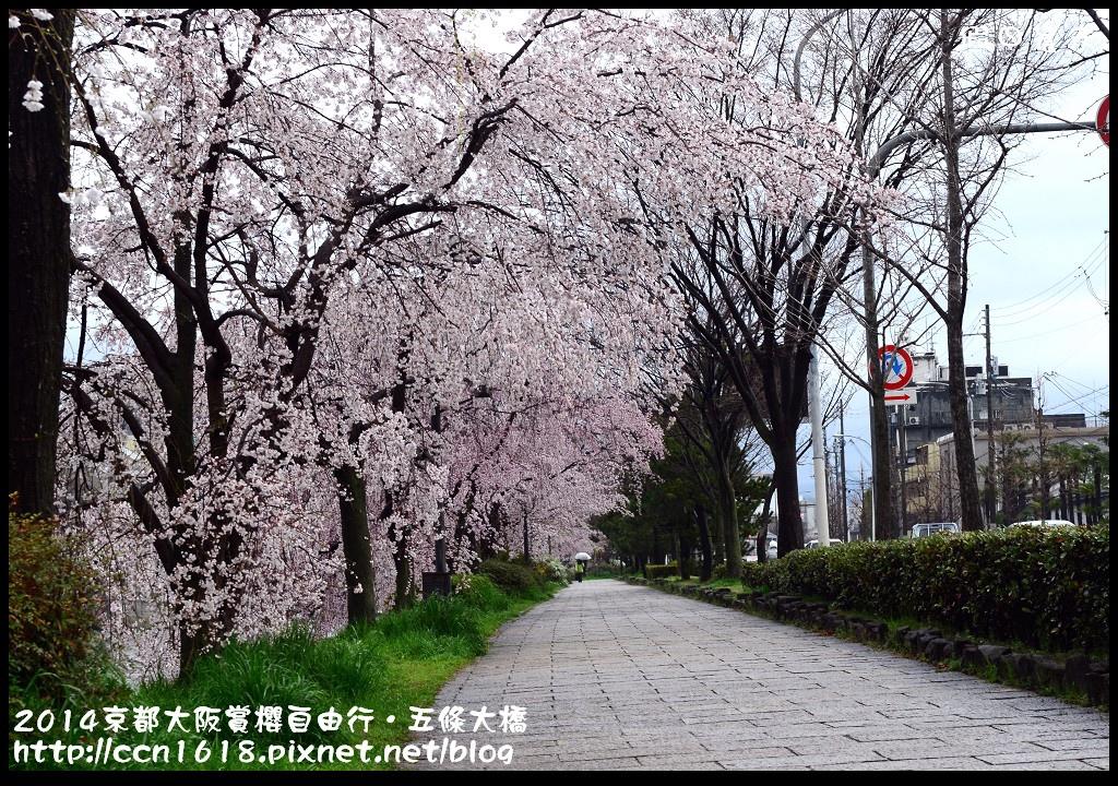 2014京都大阪賞櫻自由行.五條大橋DSC_0751