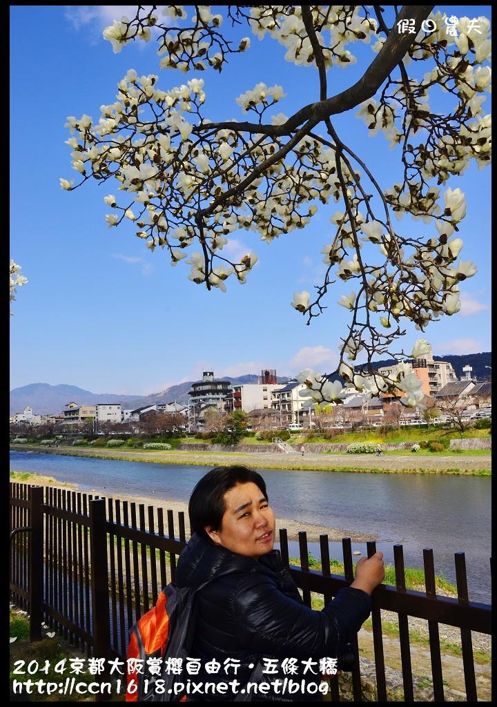 2014京都大阪賞櫻自由行.五條大橋DSC_8595