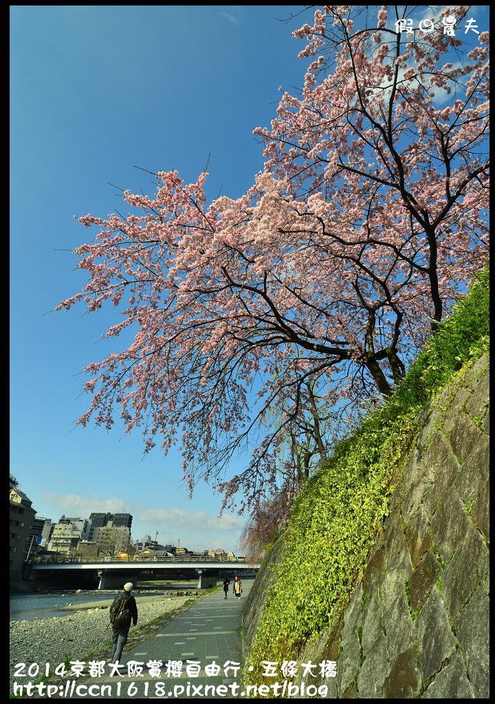 2014京都大阪賞櫻自由行.五條大橋DSC_8634