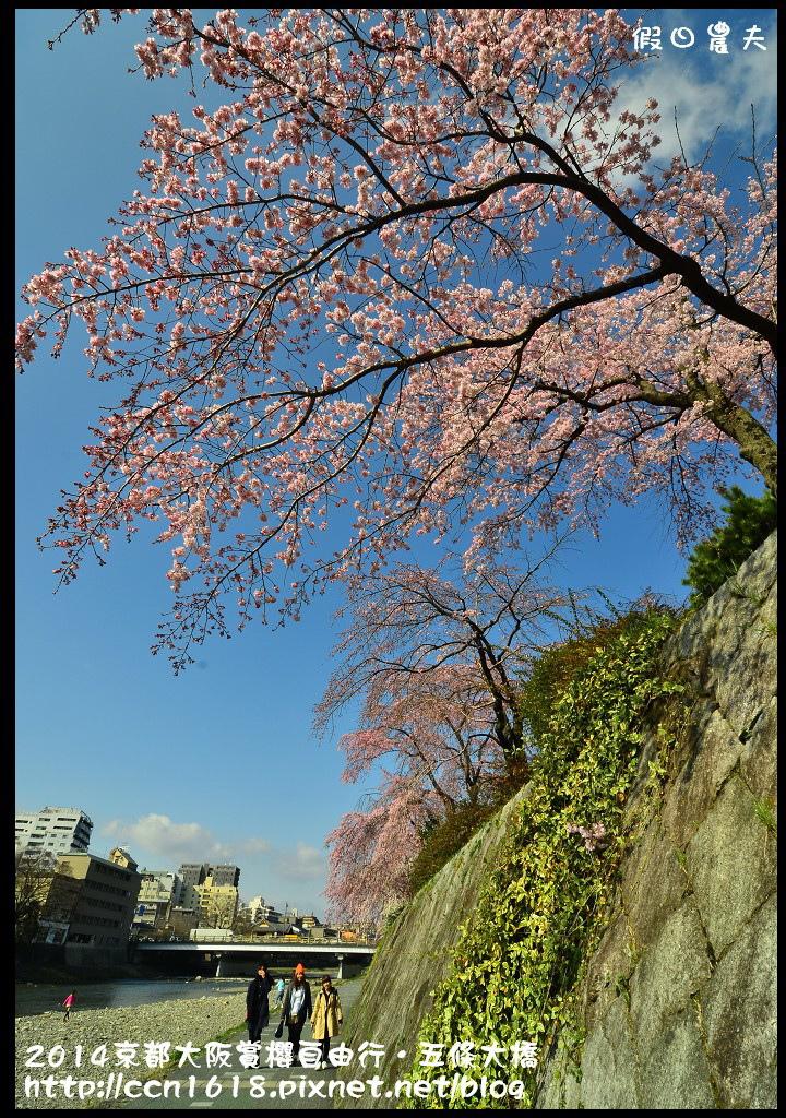 2014京都大阪賞櫻自由行.五條大橋DSC_8642
