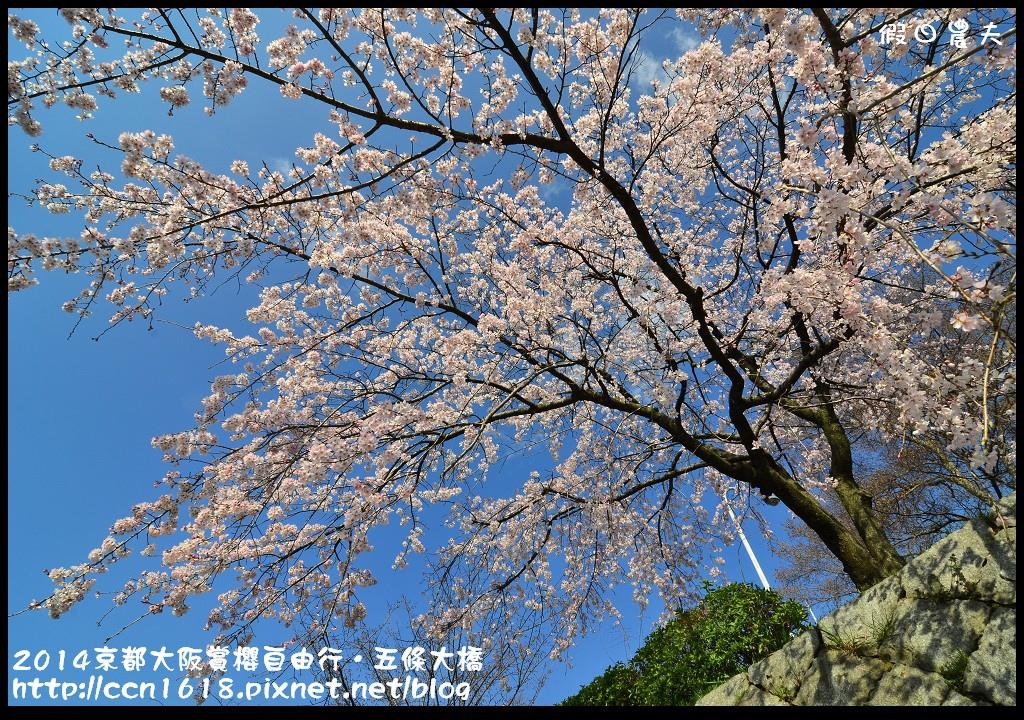 2014京都大阪賞櫻自由行.五條大橋DSC_8645