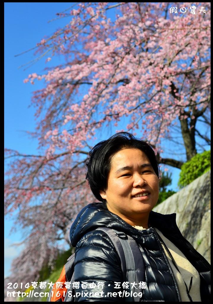 2014京都大阪賞櫻自由行.五條大橋DSC_8658