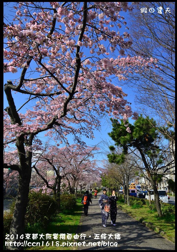 2014京都大阪賞櫻自由行.五條大橋DSC_8720