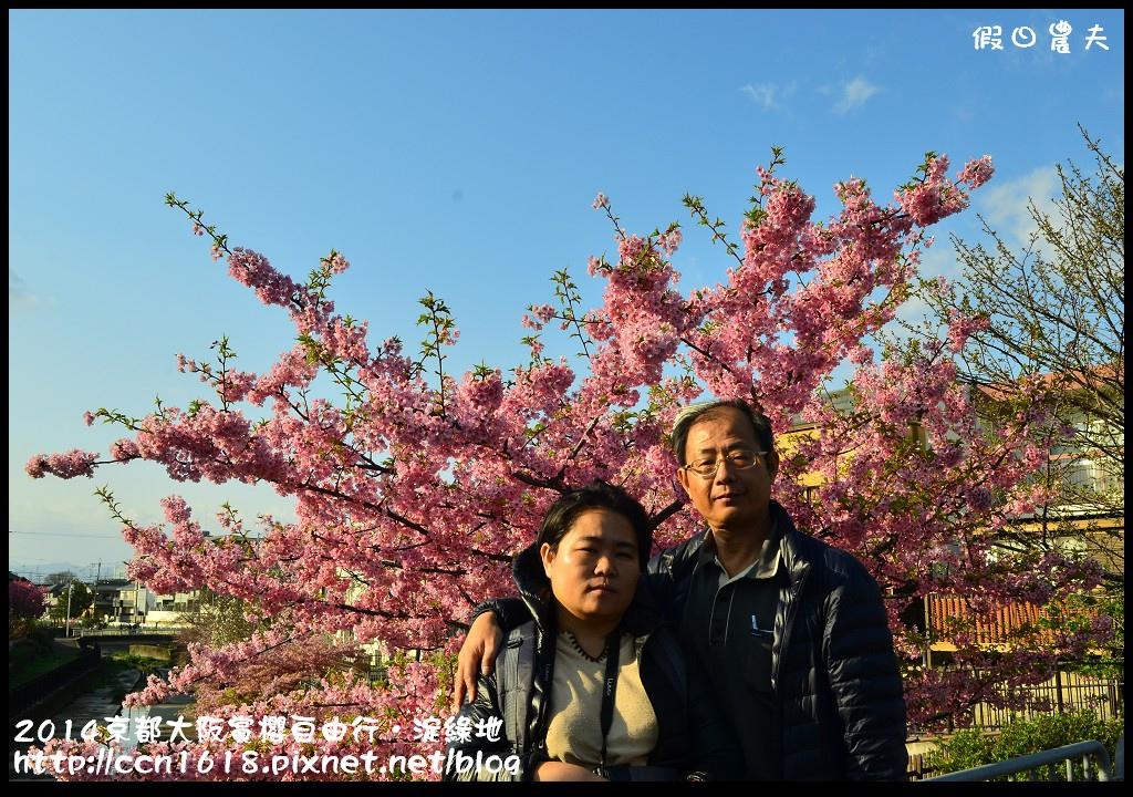 2014京都大阪賞櫻自由行.淀綠地DSC_8744