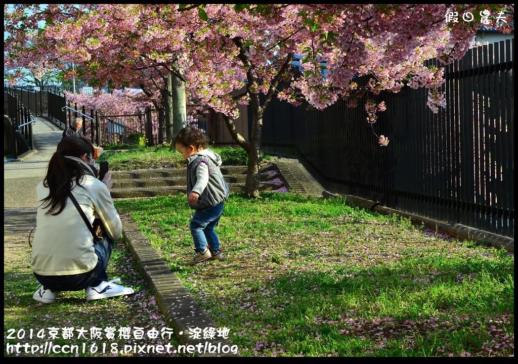 2014京都大阪賞櫻自由行.淀綠地DSC_8765