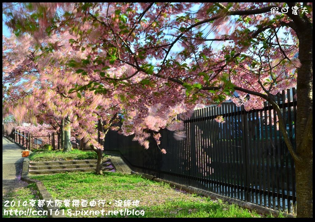 2014京都大阪賞櫻自由行.淀綠地DSC_8769