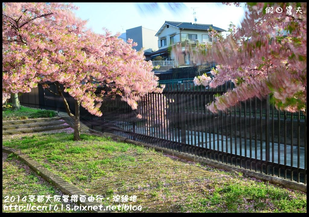 2014京都大阪賞櫻自由行.淀綠地DSC_8827