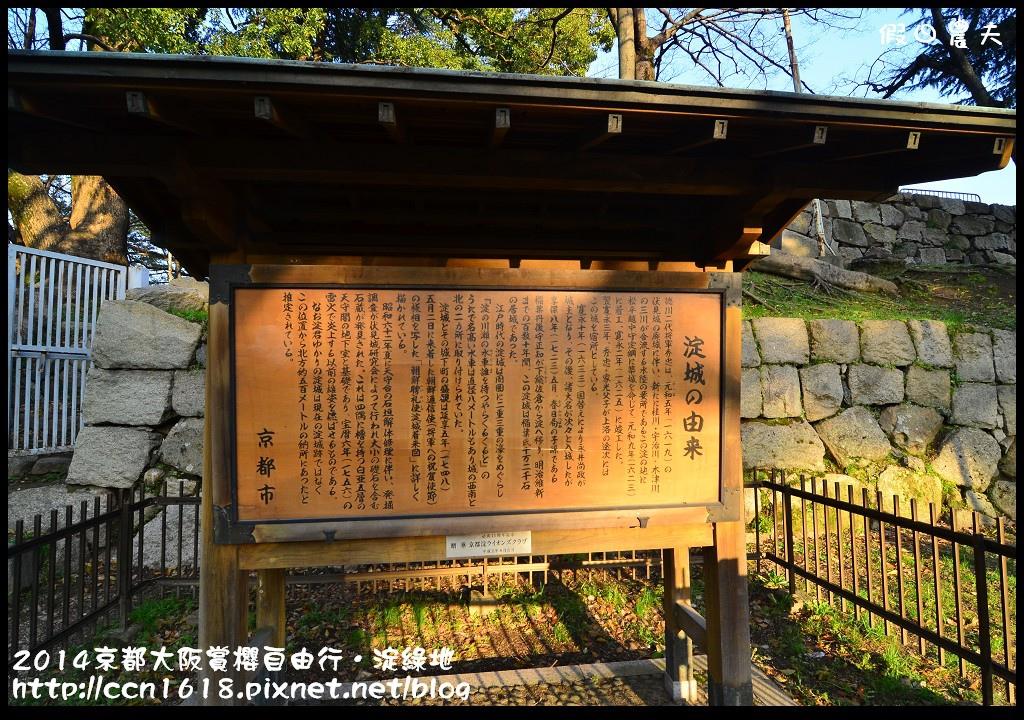2014京都大阪賞櫻自由行.淀綠地DSC_8897