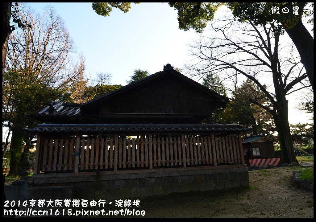 2014京都大阪賞櫻自由行.淀綠地DSC_8900