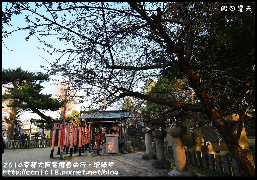 2014京都大阪賞櫻自由行.淀綠地DSC_8901