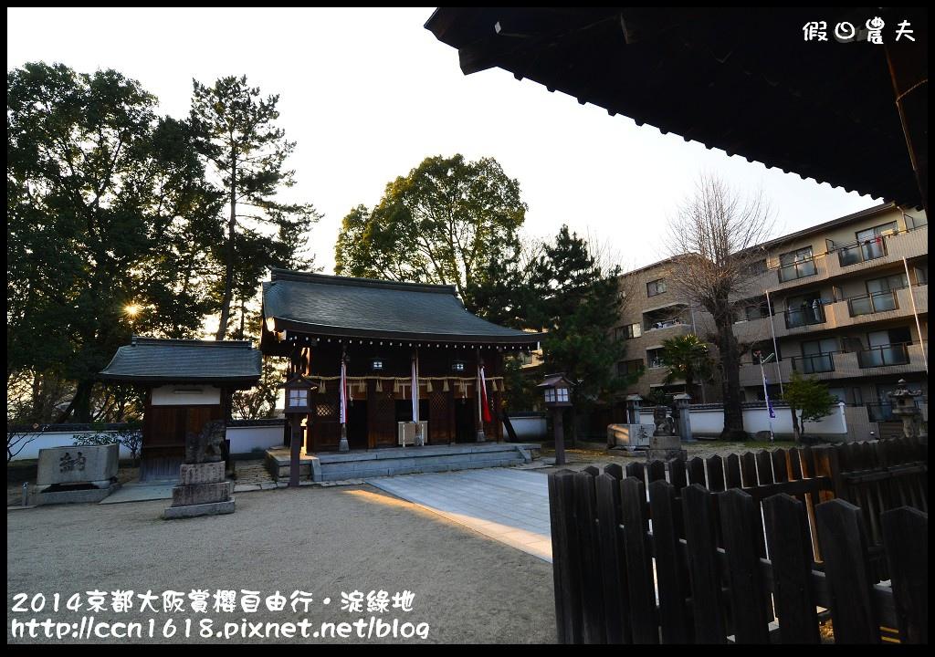 2014京都大阪賞櫻自由行.淀綠地DSC_8903