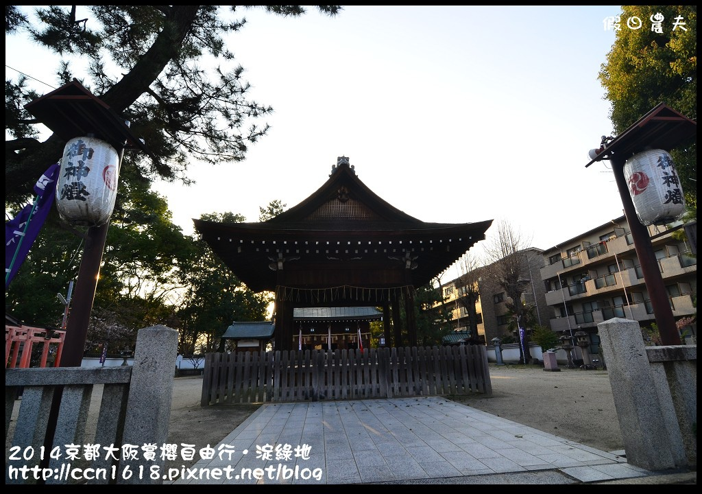 2014京都大阪賞櫻自由行.淀綠地DSC_8905