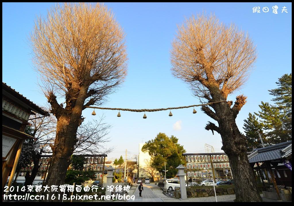 2014京都大阪賞櫻自由行.淀綠地DSC_8907