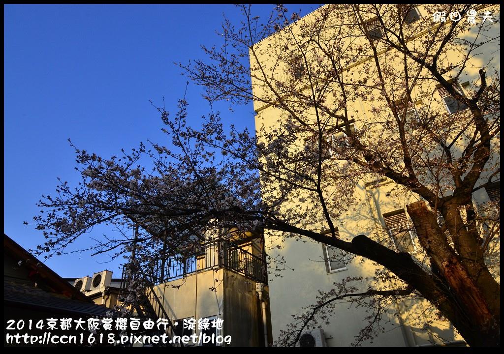 2014京都大阪賞櫻自由行.淀綠地DSC_8911