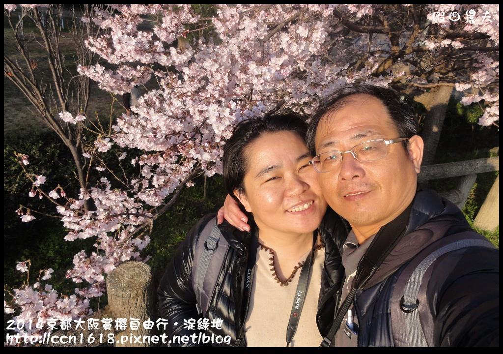 2014京都大阪賞櫻自由行.淀綠地DSC03892