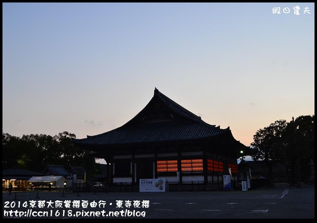 2014京都大阪賞櫻自由行.東寺夜櫻DSC_8934