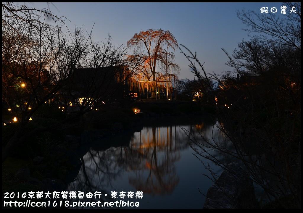 2014京都大阪賞櫻自由行.東寺夜櫻DSC_8952