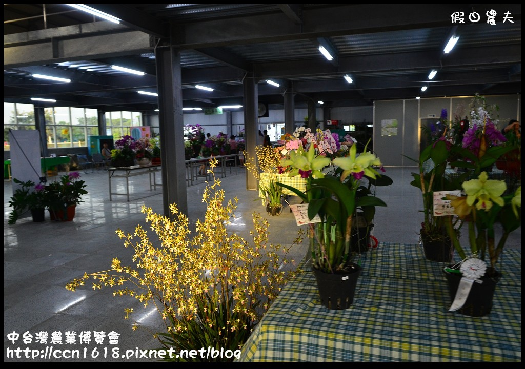 中台灣農業博覽會DSC_0656