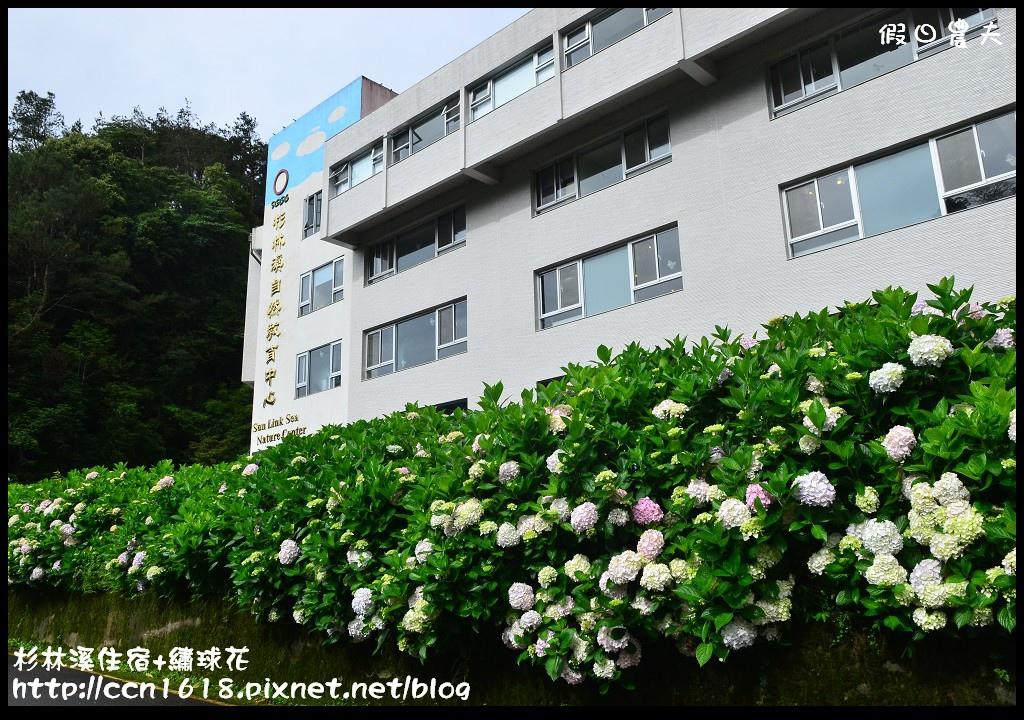 杉林溪住宿+繡球花DSC_0007