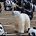 1600紙貓熊世界之旅DSC_3502