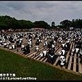 1600紙貓熊世界之旅DSC_3510
