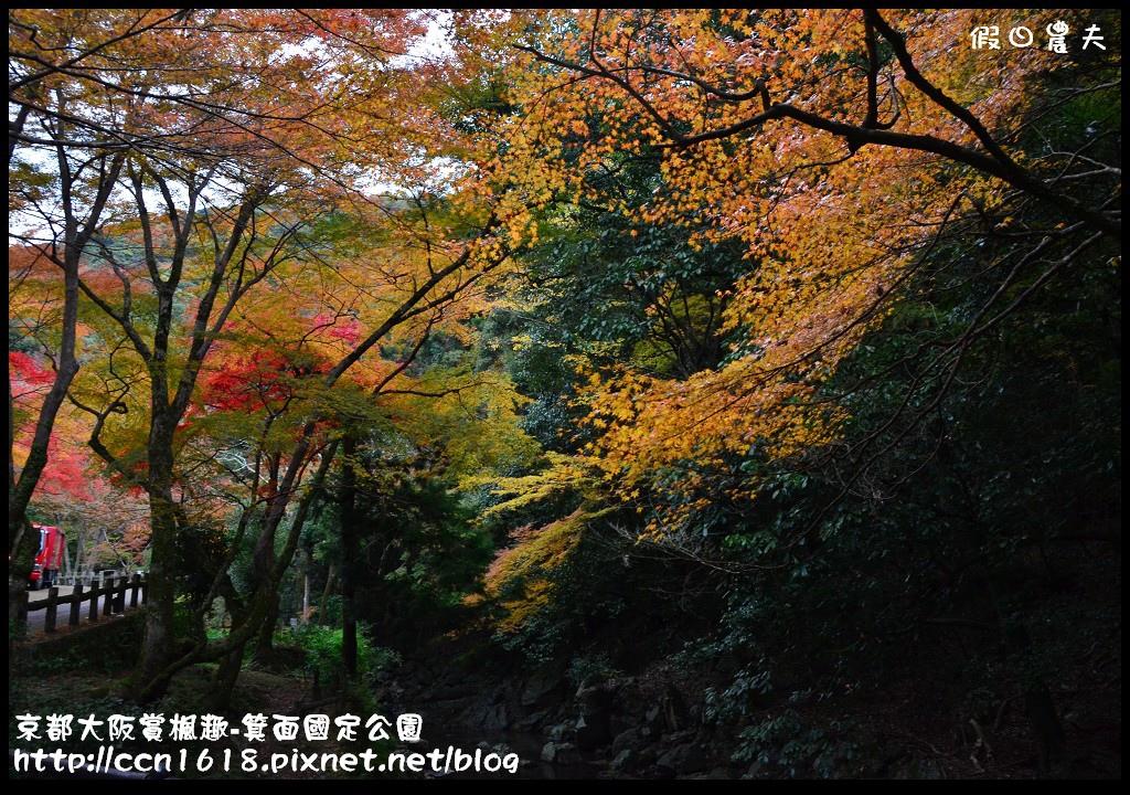 京都大阪賞楓趣-箕面國定公園DSC_6324