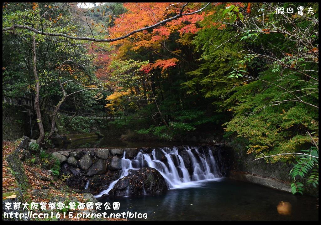 京都大阪賞楓趣-箕面國定公園DSC_6337