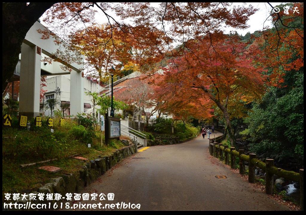 京都大阪賞楓趣-箕面國定公園DSC_6371