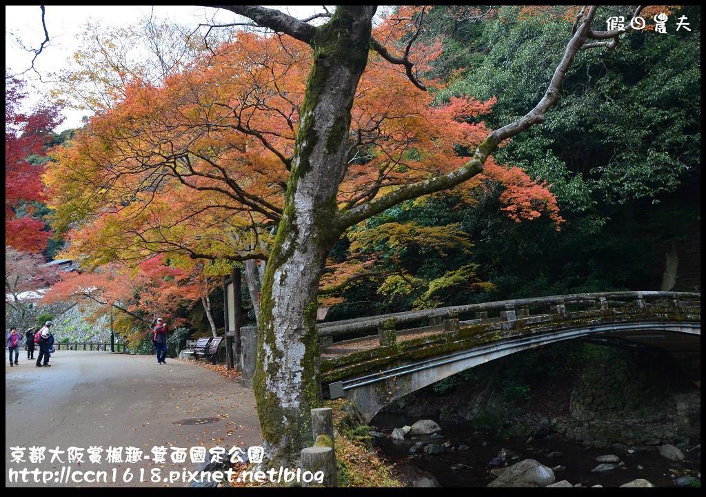 京都大阪賞楓趣-箕面國定公園DSC_6384