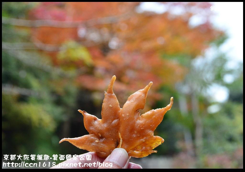 京都大阪賞楓趣-箕面國定公園DSC_6580
