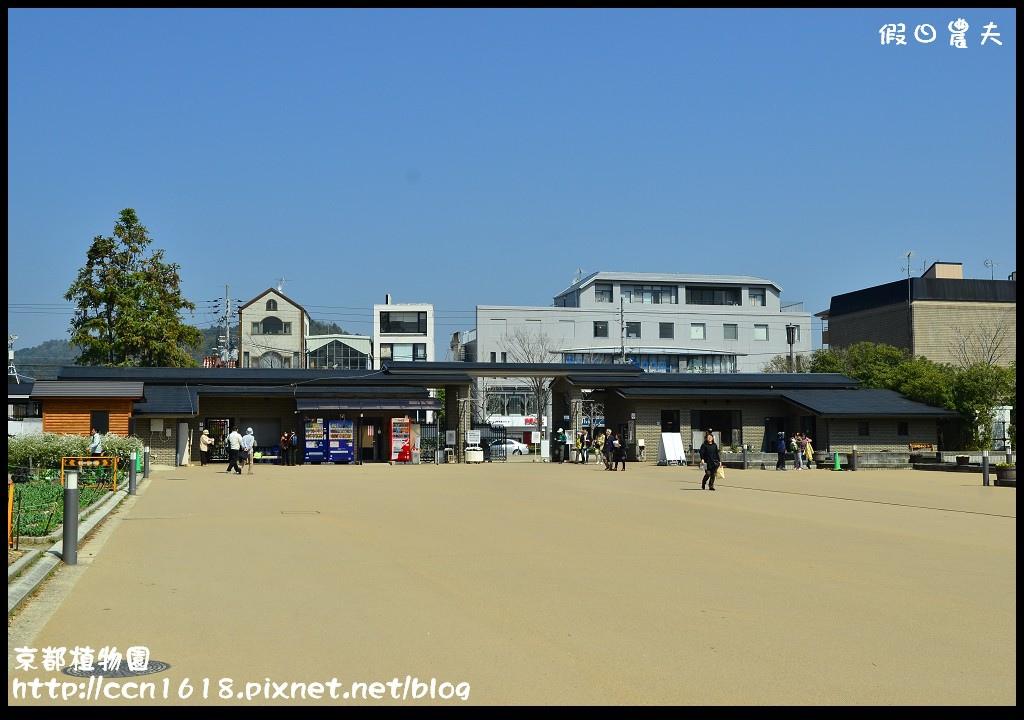 京都植物園DSC_9326