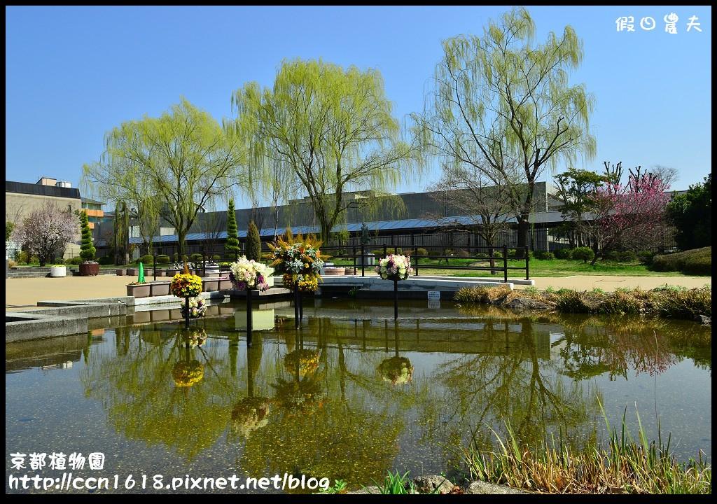京都植物園DSC_9329