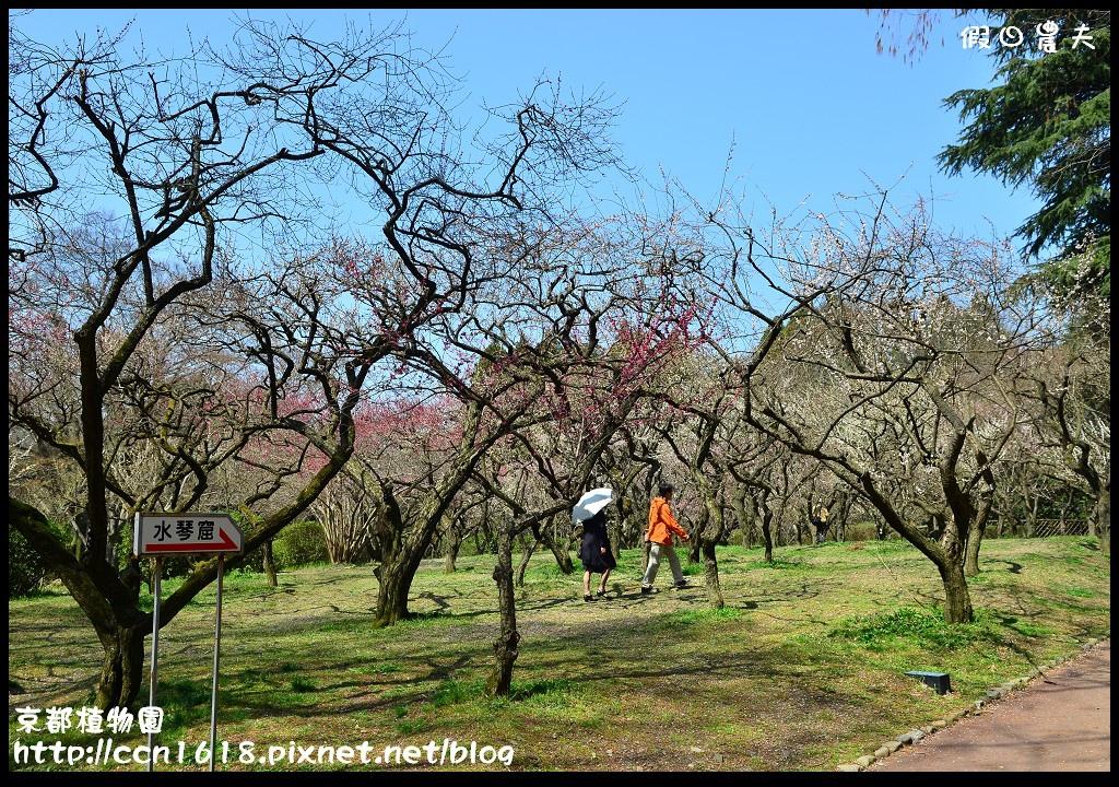 京都植物園DSC_9347
