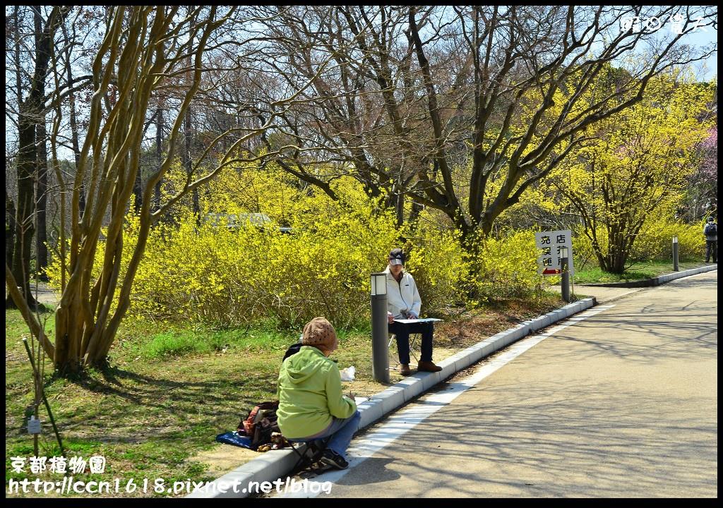京都植物園DSC_9353
