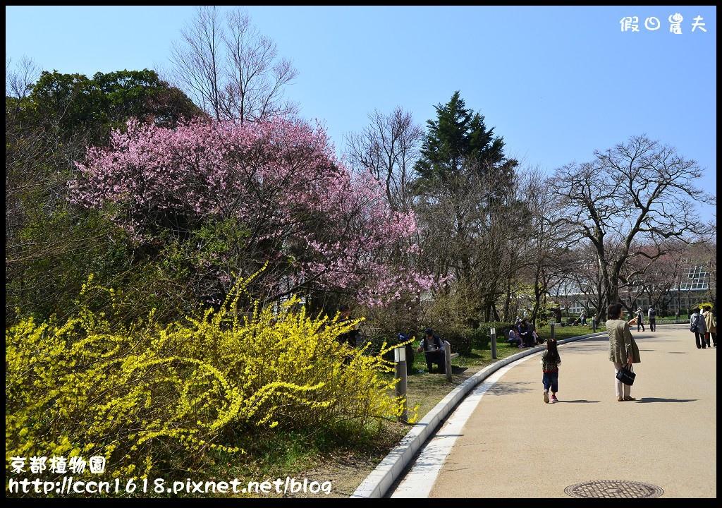 京都植物園DSC_9363